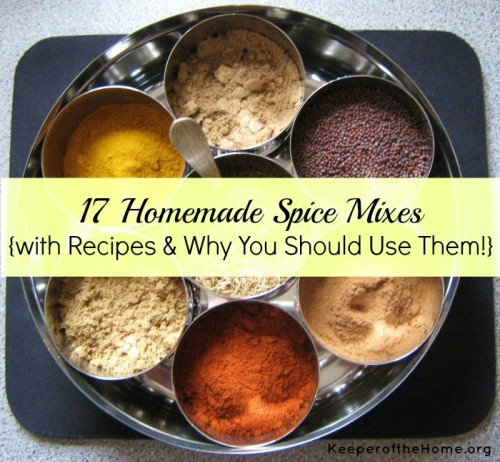 17-Homemade-Spice-Mixes--e1361066251485