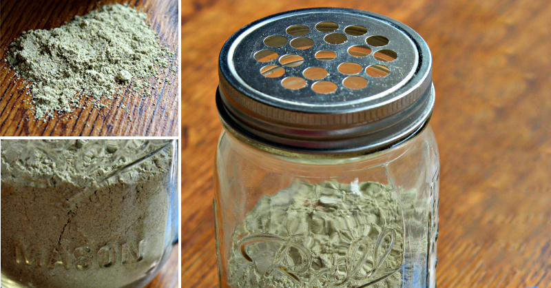 homemade-flea-powder-fb