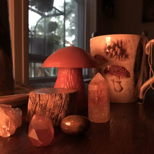 A tea cup next to a citrine, bloodstone, and petrified wood